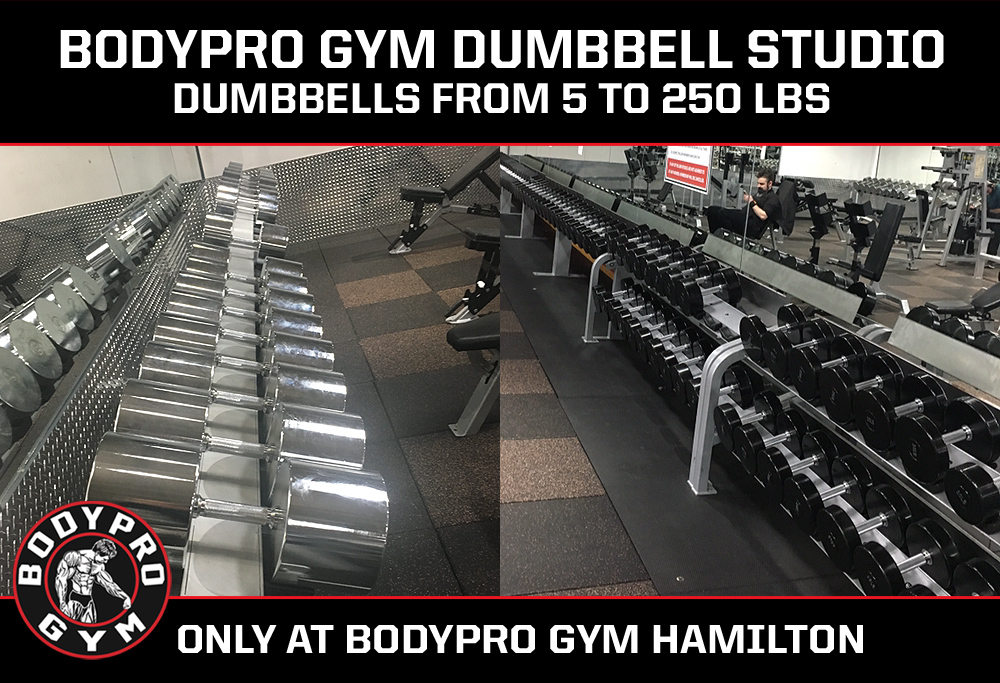 Dumbbell Room at BODYPRO GYM